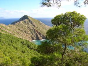 47 Marettimo Punta Basano